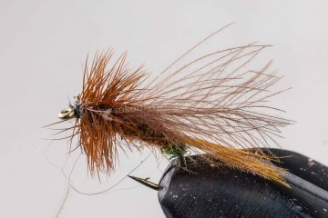 dry_ak_cdc_caddis_brown_greenbutt_051