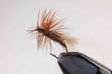 dry_nv_cdc_caddis_brown_033