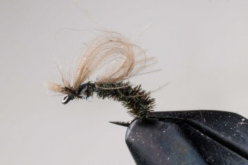 dry_nv_cdc_loop_caddis_049
