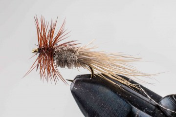 dry_nv_goddard_caddis_nat_049